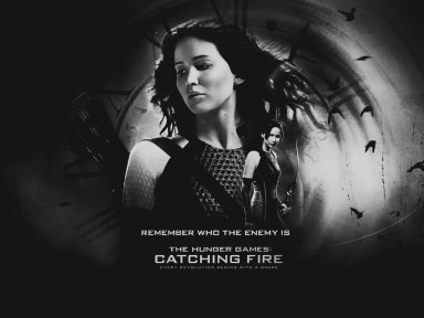 the_hunger_games__catching_fire_wallpaper_by_seia5018-d6oqzh1